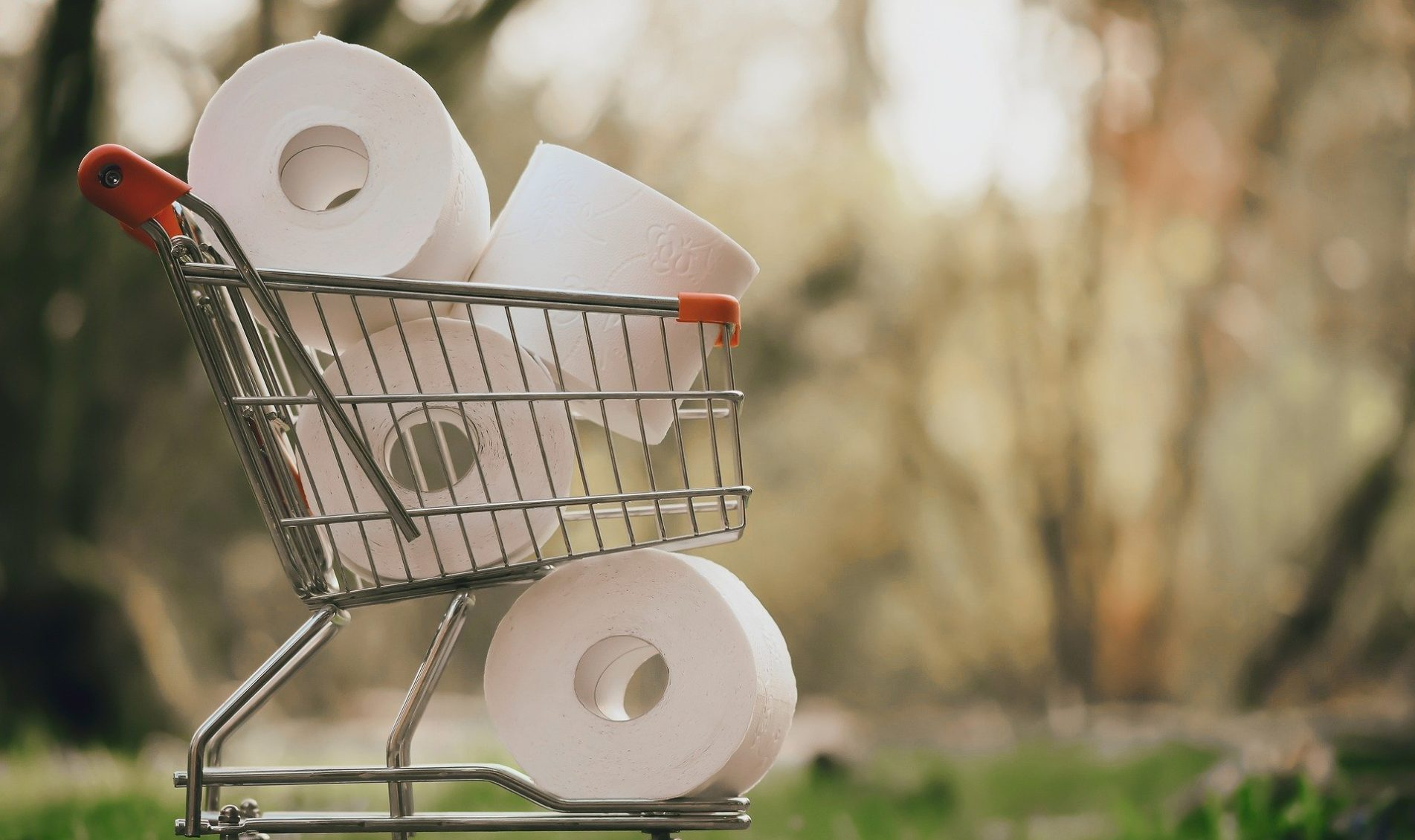 Tips On Selecting Right Toilet Paper Products For Your Bathroom